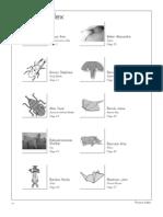 2010_origami_contents