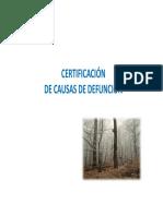 CAUSALIDAD DANE.pdf