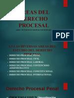 areas del derecho procesal civil