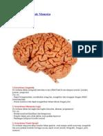 9 Kecerdasan Otak