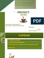 Proiect mg