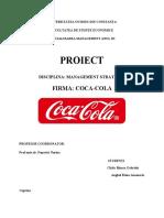Proiect Popovici