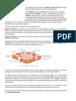 Ficha Informativa -Transportes membranares.pdf