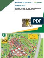 CURSO_DE_INTEGRAÇÃO - REVISADO - Cópia - Cópia (4).ppt