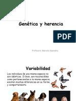 Herencia y Genetica.pdf