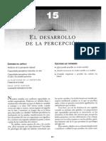EL DESARROLLO DE LA PERCEPCIÓN