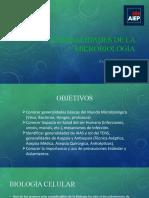 02.Generalidades de la microbiologÃ_a