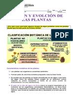 RESPUESTAS DEL ORIGEN Y EVOLUCIÓN DE LAS PLANTAS.docx