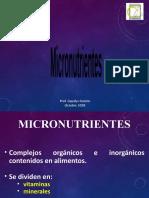 Micronutrientes.pptx