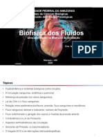 Aula 09_Biofisica da Circulaçao_2020