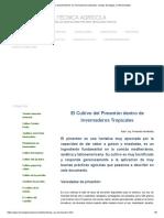 Cultivo de pimentones en invernaderos tropicales, manejo de plagas y enfermedades