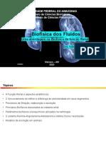 Aula 11_Biofísica da Função Renal