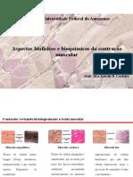 Aula 06_Aspectos biofísicos e bioquímicos da contração muscular_2020