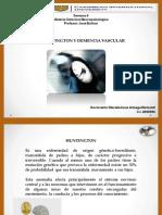 huntingtonydemenciavascular-170105215106