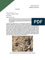 informe-terreno-metamorfica