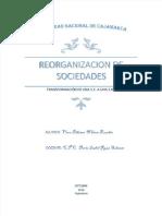 pdf-reorganizacion-de-sociedades-transformacion-de-una-sc-a-una-srl_compress