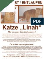 Vermisste Katze Linah