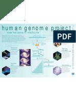 human_genome poster