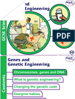 1. Genes and Genetic Engineering v2.0.ppt