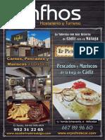 Revista Infhos 294