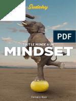 Sudehy-Tout-le-Monde-a-un-MindsetEbook