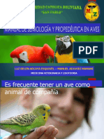 Manual Aves.pdf