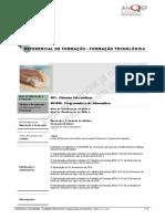 481040_Programadora-de-Informtica_RefEFA_2008