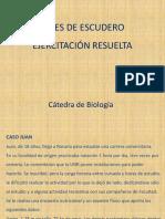 Ejercitación resuelta (1)_bf1dcb4e0e29b67bab703e09e29bd91e (2)