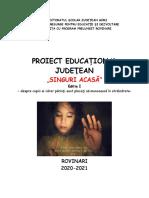 proiect judetean