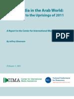 informe del Centro Internacional de Asistencia a los Medios de Comunicación