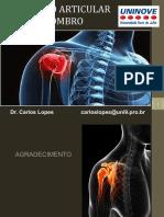 anatomia ombro
