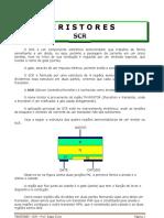 Experiências SCR.pdf