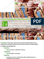 5_digestivo.pptx
