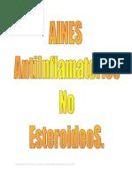GUIA AINES.pdf