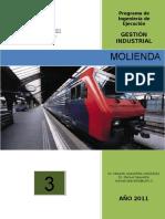 101470063-Proceso-de-Molienda.pdf