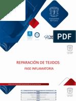 PRESENTACIÓN CLASE FASE INFLAMATORIA, PROLIFERATIVA Y MADURATIVA
