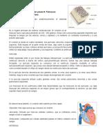 INVESTIGACION-PREVIA9.docx