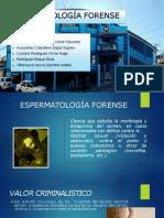 espermatologiaforense2