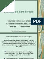 ETIOLOGIAS-ADULTOS 2 (1)