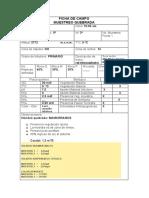 Datos Quebrada Mamarramos punto 1.docx