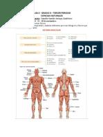 ULT.GuíaCN- 8.pdf