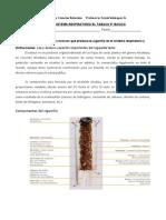 5º BÁSICO CIENCIAS NATURALES Guía sistema respiratorio Tabaco