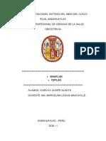 CEPLAN-SINAPLAN.docx