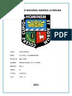 P02_TOPO_I_2014_V_C4_Delgado_Huanaco_Alvaro_INFORME.docx