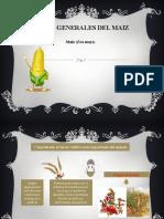 Aspectos generales del maiz