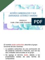 22-acidos-carboxilicos-esteres-amidas-2020