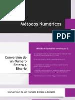 MN-T2.pdf
