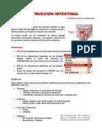 pdf-9-seminario-obstruccion-intestinal_compress