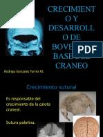 CRECIMIENTO Y DESARROLLO DE BOVEDA Y BASEll