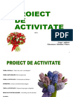 proiect didactic- ala 1